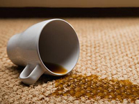 stain removal in encino